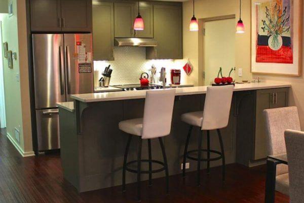 condo-kitchen4